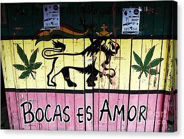 Bocas Es Amor Canvas Print