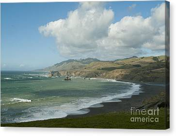 Bodega Bay California Canvas Print by Haleh Mahbod