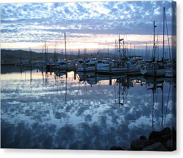 Bodega Bay Sunrise Canvas Print by Dianne Levy