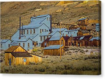 Bodie Canvas Print by Janis Knight