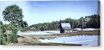 Canvas Print featuring the photograph Bog In Winter by Constantine Gregory