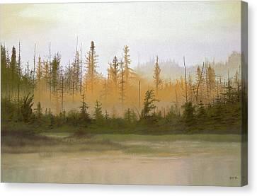 Bog Out Back Canvas Print by Bruce Richardson
