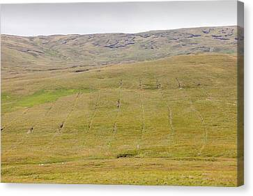 Drain Canvas Print - Boggy Moorland Above Wet Sleddale by Ashley Cooper