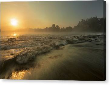 Golden River Canvas Print by Davorin Mance