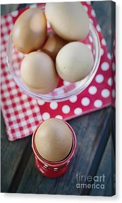 Bolied Eggs  Canvas Print