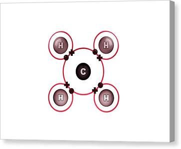 Bonding Canvas Print - Bond Formation In Methane Molecule by Animate4.com/science Photo Libary