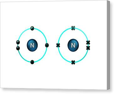 Bonding Canvas Print - Bond Formation In Nitrogen Molecule by Animate4.com/science Photo Libary