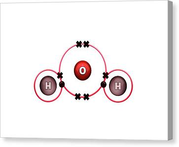Bonding Canvas Print - Bond Formation In Water Molecule by Animate4.com/science Photo Libary