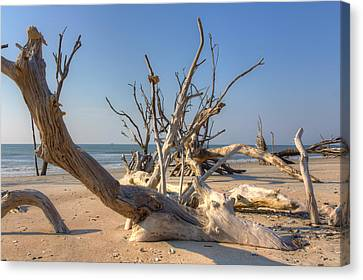 Canvas Print featuring the photograph Boneyard Beach by Patricia Schaefer