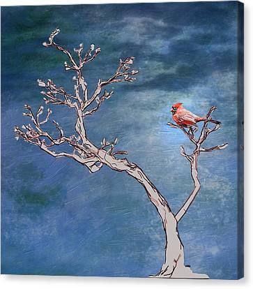 Nature Center Canvas Print - Bonsai Cardinal by John Haldane