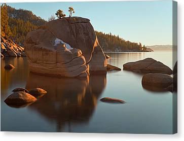 Canvas Print featuring the photograph Bonsai Rock by Jonathan Nguyen