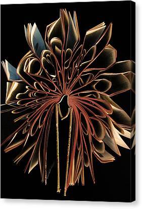 Book Flower Canvas Print by Nicklas Gustafsson