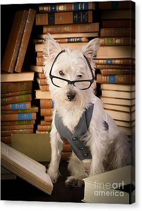 Bookworm Dog Canvas Print by Edward Fielding
