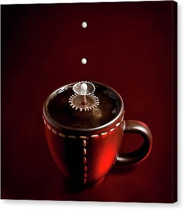 Chocolate Canvas Print - Boom Boom by Christophe Kiciak