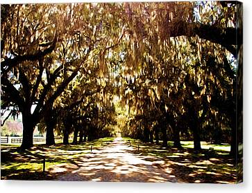 Boone Plantation Canvas Print by Bill Howard