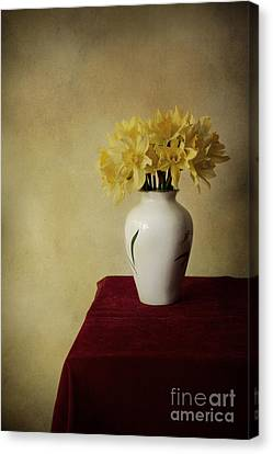 Indoor Still Life Canvas Print - Boquet Of Daffodils In White Pot  by Jaroslaw Blaminsky