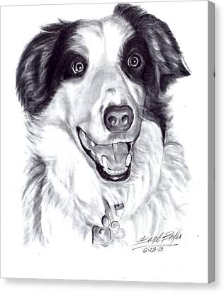 'border Collie' Canvas Print by Barb Baker