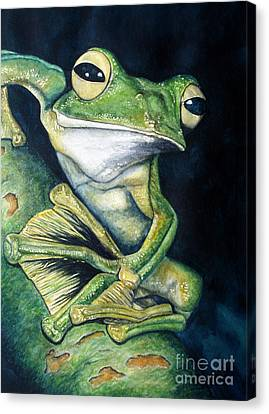 Boreal Flyer Tree Frog Canvas Print by Joey Nash