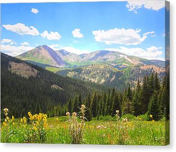 Boreas Pass Summer Canvas Print by Lanita Williams