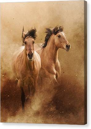 Born From Dust Canvas Print by Ron  McGinnis