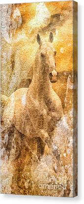 Born To Be Free Canvas Print by Mo T