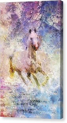 Born To Be Wild Canvas Print by Mo T