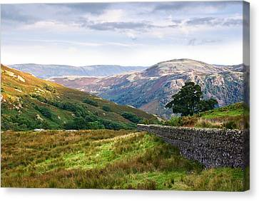 Borrowdale Valley In The Lake District Canvas Print by Jane McIlroy