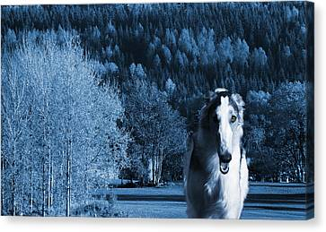 Borzoi Wolf Hound Emerging From Dark Blue Forest Canvas Print by Christian Lagereek