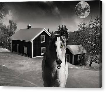 Sight Hound Canvas Print - Borzoi Wolf Hound On A Midnight Hunt by Christian Lagereek