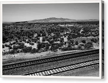 Bosque Del Apache National Wildlife Preserve         Canvas Print