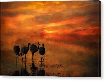 Bosque Sunset Canvas Print by Priscilla Burgers