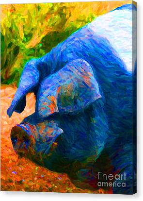 Boss Hog - 2013-0108 Canvas Print by Wingsdomain Art and Photography