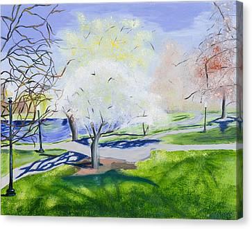 Boston Public Garden Canvas Print by Carmela Cattuti