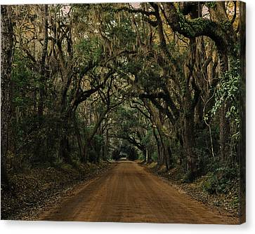 Botany Bay Road Canvas Print