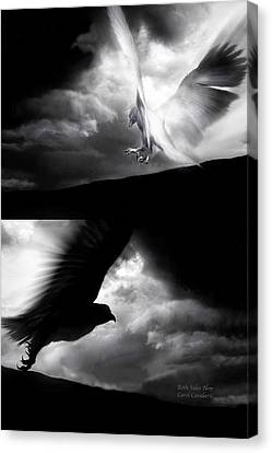 Both Sides Now Canvas Print