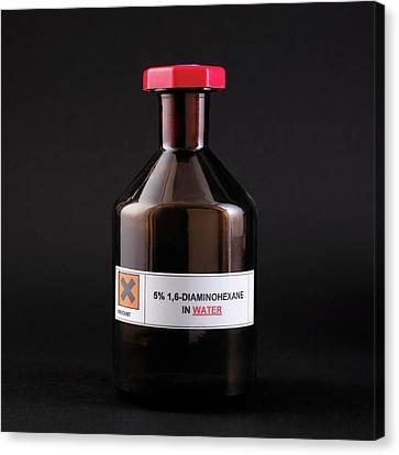Bottle Of 1 Canvas Print by Science Photo Library
