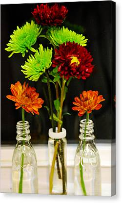 Bottled Flowers Canvas Print by Linda Segerson