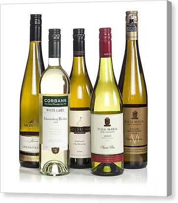 Bottles Of New Zealand Wine Canvas Print