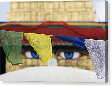 Boudhanath Stupa Prayer Flags Canvas Print by Tim Gainey