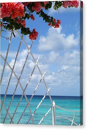 Bougainvillea Beach Canvas Print by Randall Weidner