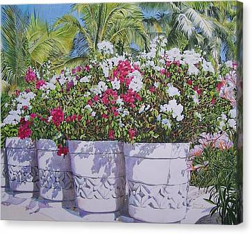 Canvas Print featuring the mixed media Bougainvillea by Constance Drescher