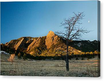 Boulder Colorado Flatirons Early Morning Light Canvas Print by James BO  Insogna