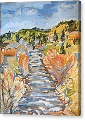 Boulder Creek Nederland Co Canvas Print by Al Hart