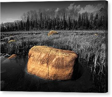 Boulders In A Pond Near The Boundary Waters Canvas Print by Randall Nyhof
