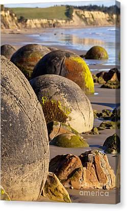 Boulders Moeraki Otago New Zealand Canvas Print by Colin and Linda McKie