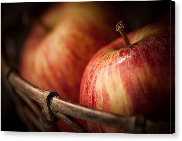 Bountiful Canvas Print by Amy Weiss