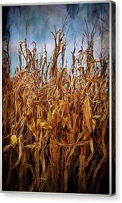 Southern Indiana Autumn Canvas Print - Bountiful Harvest by Julie Dant