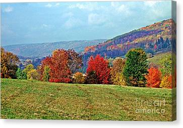 Bounty Of The Hills Canvas Print by Christian Mattison