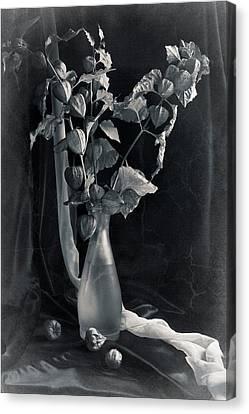 Bouquet Of Physalis Canvas Print by Sviatlana Kandybovich