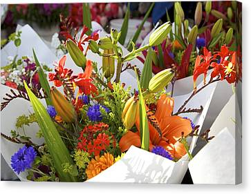 Bouquets Of Color Canvas Print by Terry Horstman